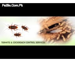 Special CnG Fumigation, & Pest Control,