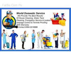 House & Office Professional Cleaning Service