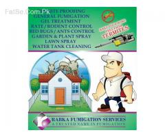 """Rabka fumigation """" termite can damage your wood so call now"""