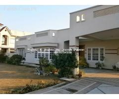 rent commercial banglow 3000sqyd school,university,
