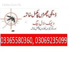 Termite control and fumigation services 0306/9235099